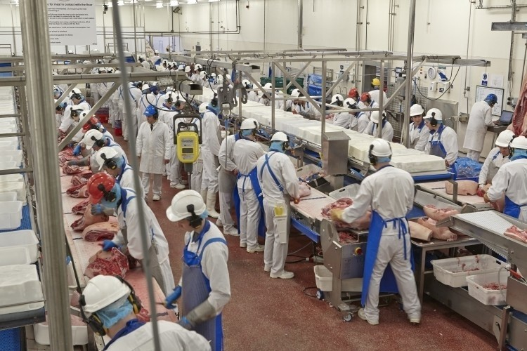 Coronavirus-meat-factory-contingency-plans-in-place_wrbm_large